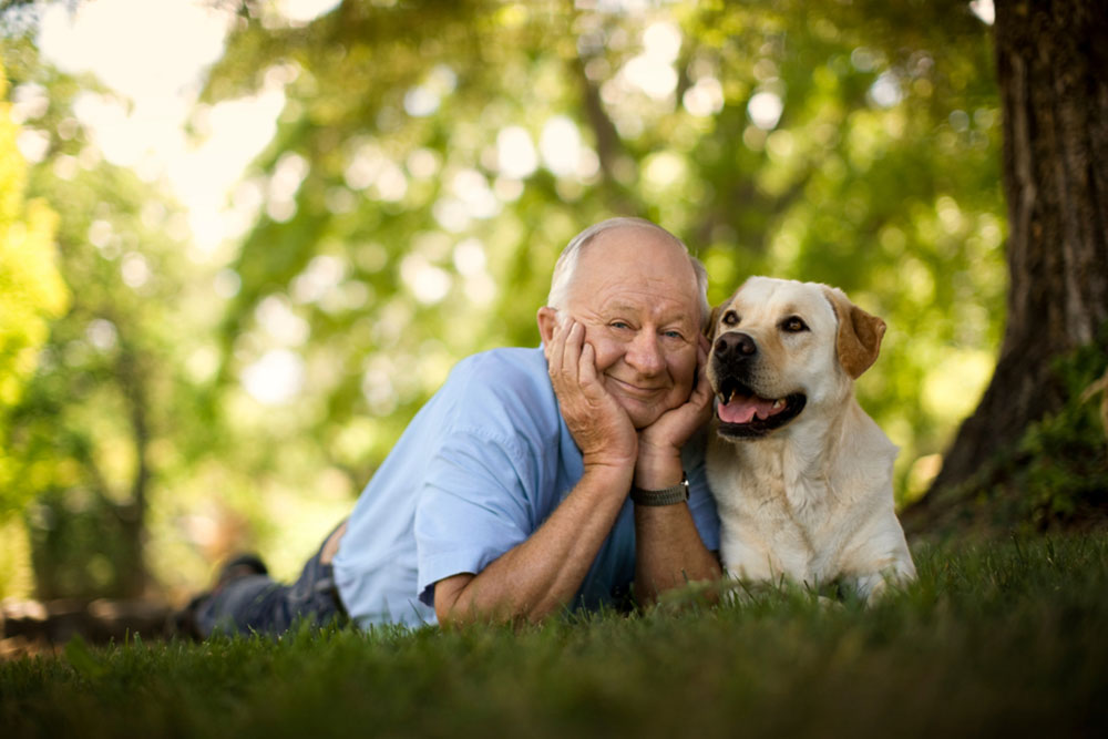 Senior man lying on the grass with his dog.